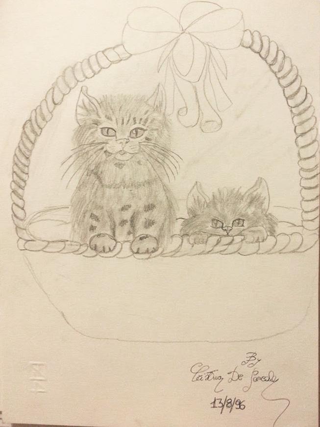silentkilldesire-personalblog-blogger-draw-disegno-superpoteri-articolo-news-cat